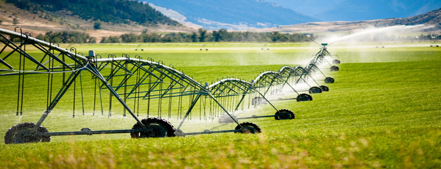 Nông nghiệp Công nghệ cao NN.4.0